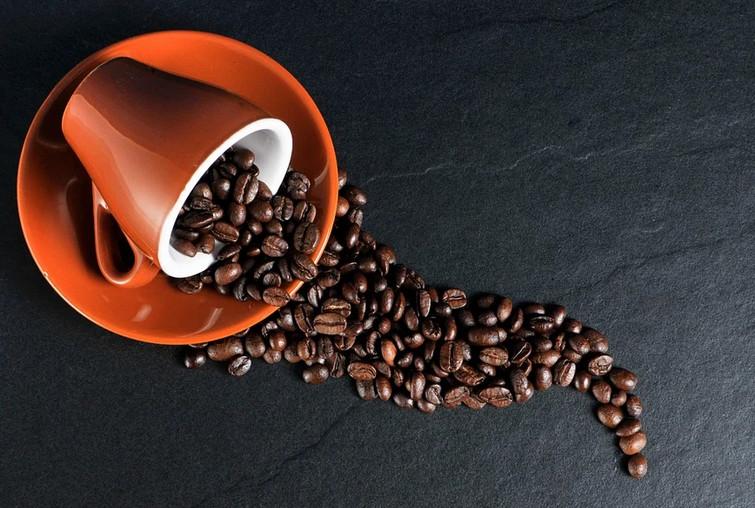 Comment choisir votre nouvelle cafetière ?